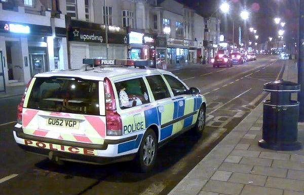 Bin police