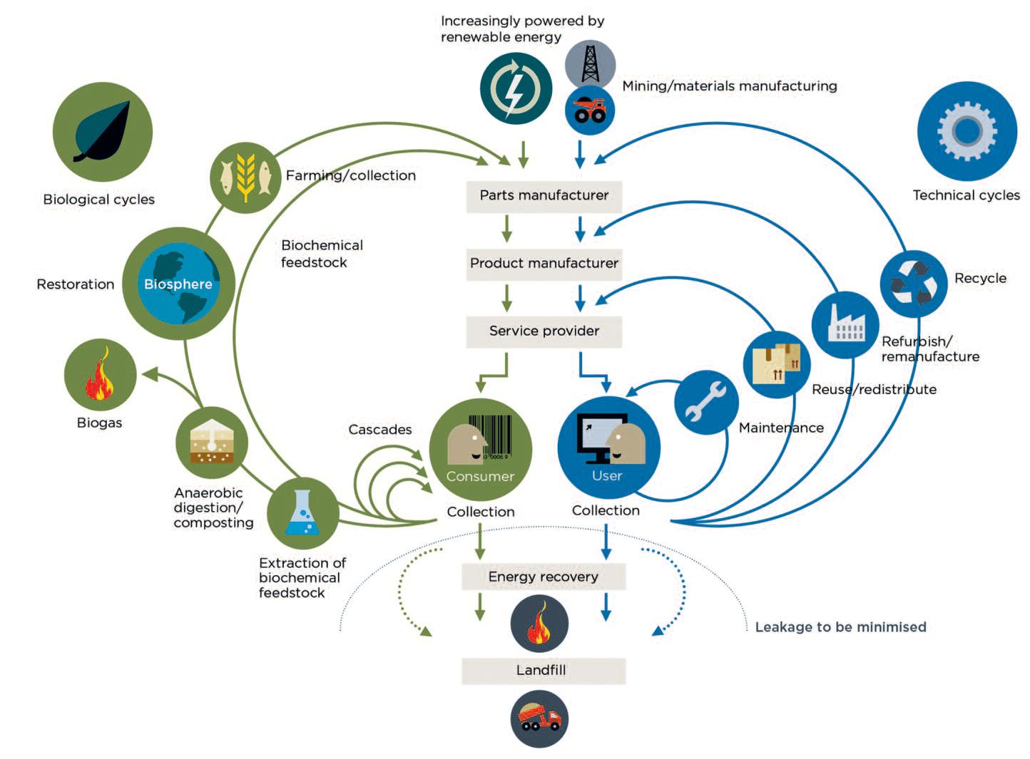 CE Diagram