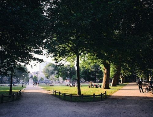 Parking restrictions? Undervaluing green space in the UK