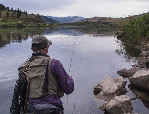 Multiple points: in favour of fishing hook restrictions