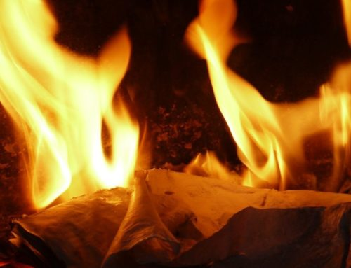 Myth takes: it's greener to incinerate paper than recycle it