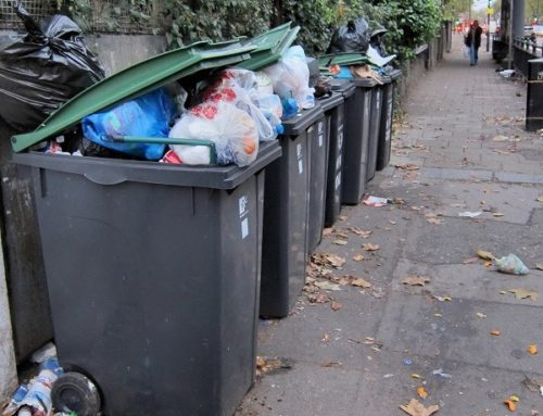 Institutional failure? Environmental health and monthly bin collections