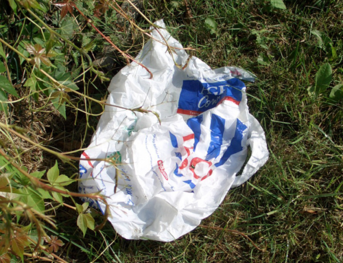 Returning to the charge: an England carrier bag data update